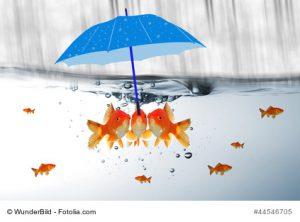 Führung bedeutet, sich zu überlegen, was versäumt wurde, dass Mitarbeiter in der Komfortzone verharren. Diese Gründe zu erkennen, ist nicht einfach.